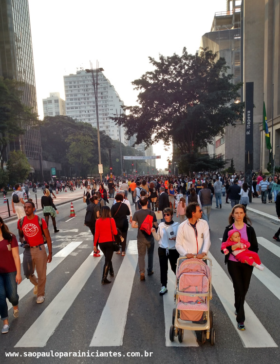 domingo paulista