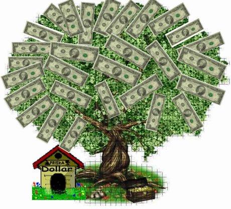 sacoleira-dinheiro